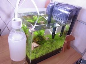 発酵式CO2添加装置の作り方-水草水槽のCO2ボンベ代用法