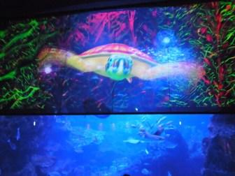 水族館×プロジェクションマッピング=超綺麗!京都水族館等で開催