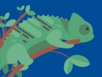 コオロギにミルワーム!トカゲやカエルの餌「昆虫」の種類・栄養・給餌法まとめ