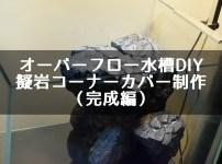 オーバーフロー水槽DIY 擬岩コーナーカバー制作(完成編)
