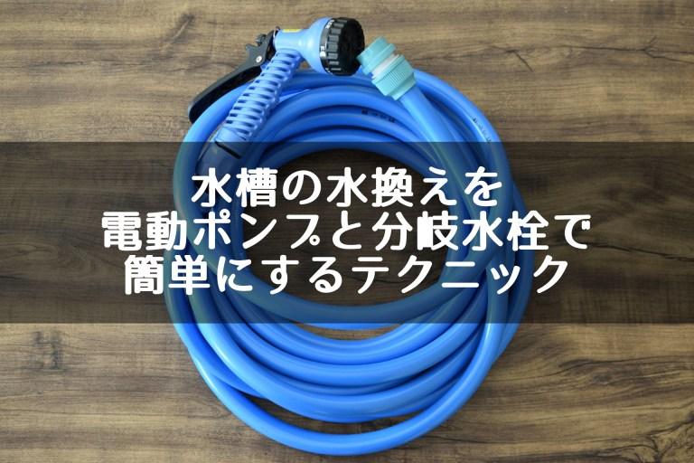 水槽の水換えを電動ポンプと分岐水栓で簡単にするテクニック