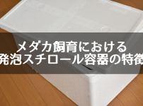 メダカ飼育における発泡スチロール容器の特徴