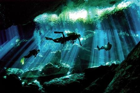 The Best Dive Sites of the World Cenote Diving Riviera Maya Best Dive Sites: Top 15 Dives to Experience Before You Die