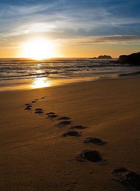Manifiesto de un caminante nómade