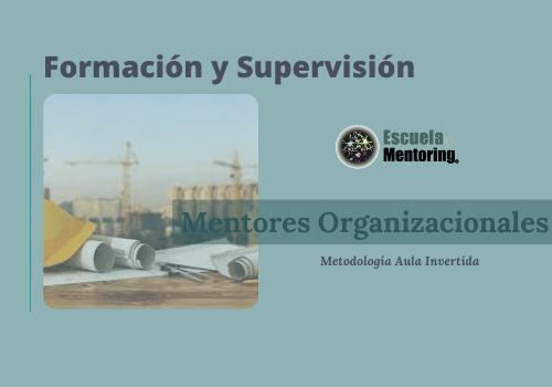 Nueva formación mentores organizacionales en una de las 10 constructoras más importantes en España y México