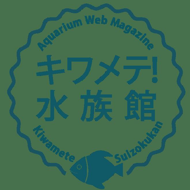 kiwamete_logo