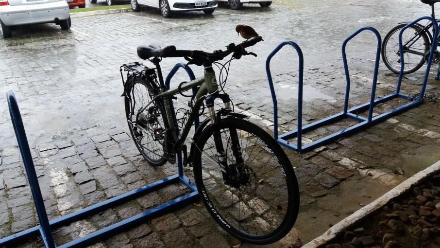 03.Aquela_que_Pedala_O_passaro_e_a_bicicleta_Luciana_Vieira