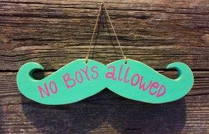 No-Boys-Allowed-Men-Feminists