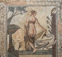 Leda chipriota