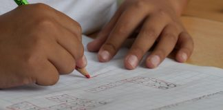 Niños estudio