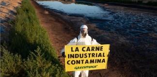 Greenpeace denuncia que la carne industrial contamina, JUN2020