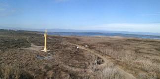 Delta del Ebro @ kontxaki