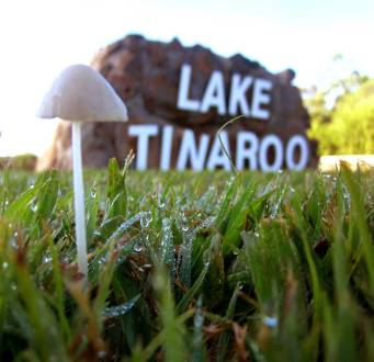 LAKE TINAROO (Cairns), QLD, Australia