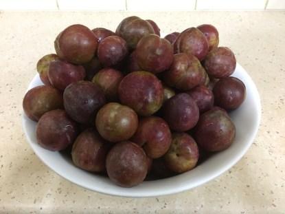 satsuma-plums-washed-2017