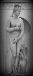 """""""The Capitoline Venus"""" It is an Antonine copy of a late Hellenistic sculpture derived from Praxiteles . """"The Capitoline Venus"""" and her variants are recognisable from the position of the arms, as Venus begins to cover her breasts with her right hand, and her groin with her left hand. Capitoline Museums, Rome. Italy."""