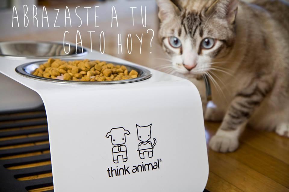 Think animal