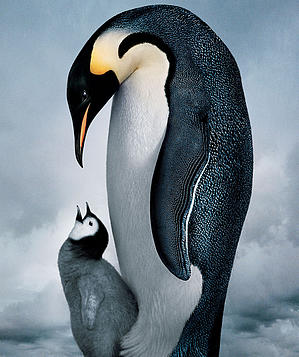 march_of_the_penguins_300
