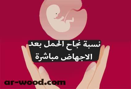 نسبة نجاح الحمل بعد الاجهاض مباشرة