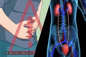 علاج التهاب مجرى البول عند الرجال بالاعشاب