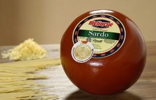 Resultado de imagen para queso argentina