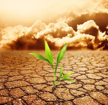 مشاكل الحاضر: تلوث التربة والنضوب
