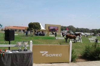 النسخة 2018 من المباريات البين- جهوية لتربية الخيول العربية – البربرية