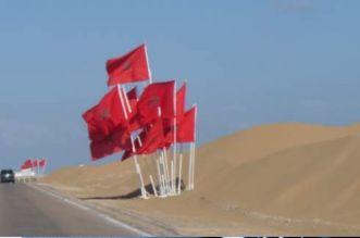 غينيا تصفع البوليساريو بخصوص قضية الصحراء المغربية