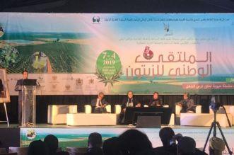 وزارة الفلاحة: قطاع زيت الزيتون يدر على المغرب ما يعادل 1.8 مليار درهم من العملة الصعبة سنويا