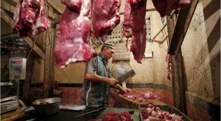 منظمة الأغذية والزراعة:المخاوف لضمان سلامة الأغذية وصحة المستهلك في شرق وجنوب شرق آسيا