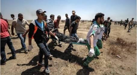 فلسطين: 58 شهيدا فلسطينيا و2771 مصابا برصاص الجيش الإسرائيلي قرب حدود غزة