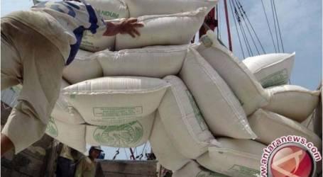 شمال سولاويزي تقوم بتصدير دقيق جوز الهند إلى مصر