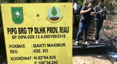 تطويرالبنية التحتية لإعادة ترطيب الخث في رياو