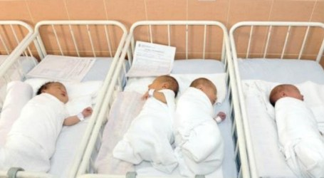 فرنسا تحظر اسم جهاد للمواليد الجدد