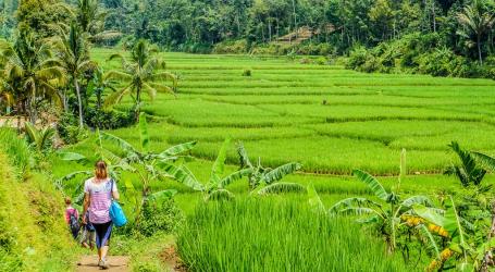 الوزارة : يمكن أن تصبح السياحة البيئية القوة الدافعة للاقتصاد الأخضر