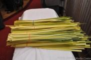 Palm Sunday (19A)