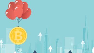 شتاء التشفير في عالم العملات الرقمية