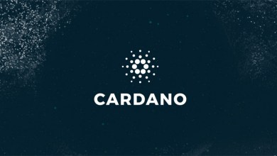 مؤسس الكاردانو (ADA): أكثر من 50 مطور يعمل على مشروع الكاردانو لحل مشكلة التبني