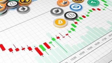 4 بالمئة فقط من العملات المشفرة البديلة كان أداؤها أحسن من البيتكوين مقارنة بالعام الماضي