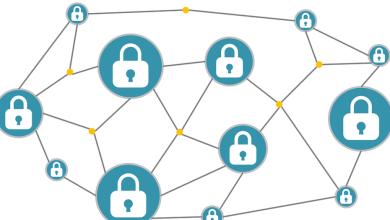 """ما هو """"دومين"""" البلوكشين وما هي أهميته في عملية تبني العملات الرقمية؟"""