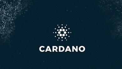 """كاردانو تنتج أول كتلة لـ بلوكشين """"شيلي"""" ... التفاصيل هنا"""
