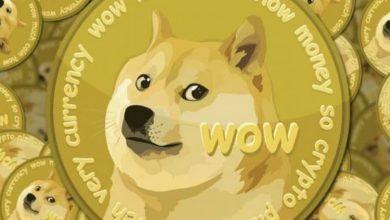 تعرف على عملة Dogecoin التي تحولت من مجرد دعابة لعملة رقمية واسعة الانتشار