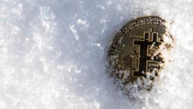 العديد من مشاريع الايثيريوم تلجأ إلى تجميد العملات الرقمية المتأثرة بإختراق منصة KuCoin