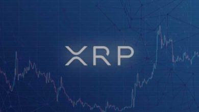 عناوين العملة الرقمية XRP تصل إلى ذروة جديدة في عشية توزيع Spark ... التفاصيل هنا