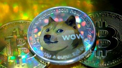 """العملة الرقمية """"Dogecoin"""" وتأثير المشاهير...هل فعلا تستحق """"Dogecoin"""" الاستثمار فيها؟"""