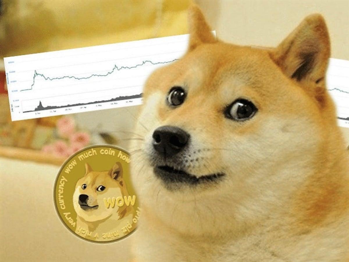 """نسخ العملة الرقمية """"Dogecoin"""" يُستعمل لجذب """"الأموال الغبية"""" وهو سبب انخفاض البيتكوين!"""