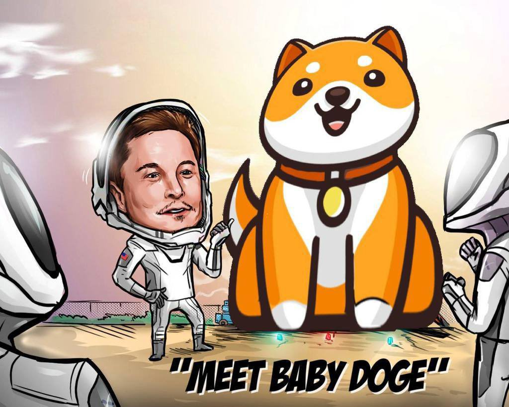 """ما هو مشروع """"Baby Doge"""" ولماذا يقوم """"إيلون ماسك"""" بضخ عملات الميم؟"""