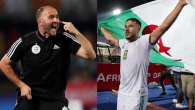 صورة جمال بلماضي يحسم مصير يوسف بلايلي مع منتخب الجزائر