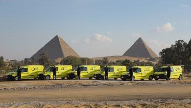 Photo of نون قريباً في مصر