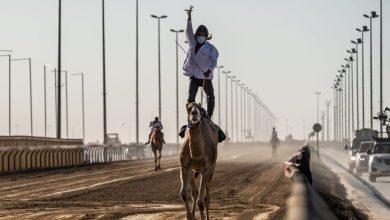 Photo of Emirati brothers Al Ketbi dominate preliminary Camel Marathon races