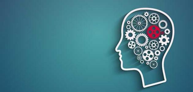 تخصص علم النفس في الجامعات..ومجالات العمل